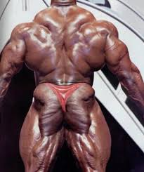 I should have known better than to Google Glute ART
