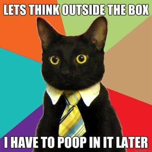 cat box poop