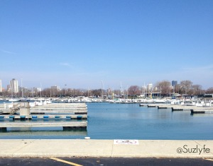 Montrose harbor, on the way to my car.